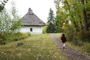 Cabane de pionnier ukrainien