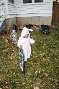 Un lapin perdu dans un cimetière. Ouhhhh ça fait peur!