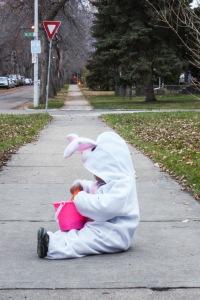 Le lapin compte ses bonbons